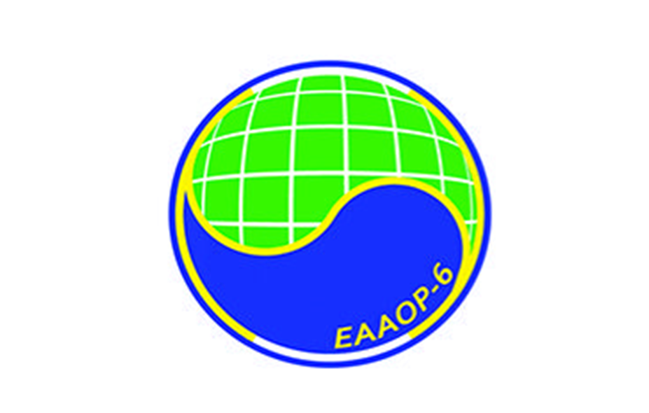 6th European Conference on Environmental Applications of Advanced Oxidation Processes (EAAOP-6)